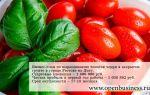 Бизнес-план по выращиванию томатов черри в закрытом грунте