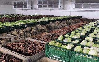Овощехранилища для хранения и последующей реализации овощей