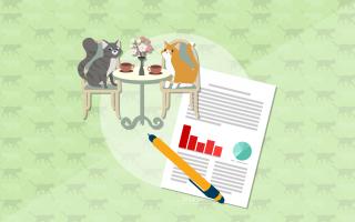 Готовый бизнес-план кейтеринговой службы