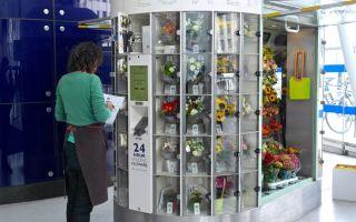 Свой бизнес: вендинговые автоматы по продаже цветов