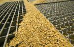 Открытие собственного бизнеса по обработке зерна