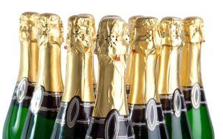 Свой бизнес: производство шампанского и других игристых вин