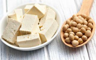 Свой бизнес по производству тофу
