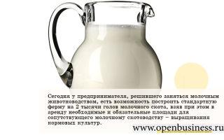 Молочный бизнес тенденции и возможности
