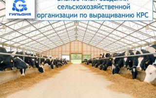 Готовые бизнес-планы и руководства по сельскому хозяйству