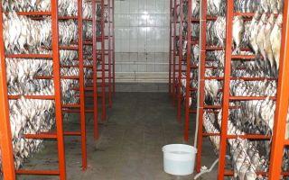 Свой бизнес: цех вяления и копчения рыбы