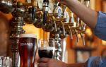 Как открыть бар: секреты пивного бизнеса