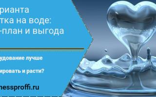 Свой бизнес: как заработать на воде
