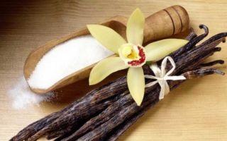 Свой бизнес: производство ванилина