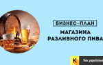 Готовый бизнес-план: магазин разливных напитков