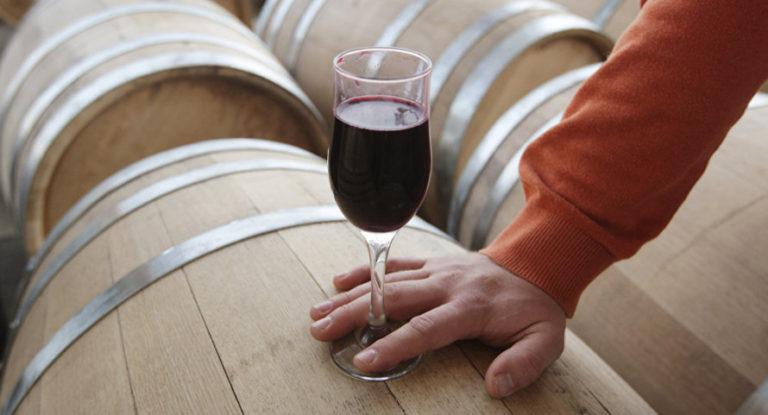 Как открыть собственное производство вина в россии
